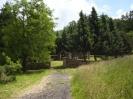 Ruine Meisenbach_10