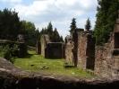 Ruine Meisenbach_6