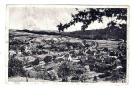 Thaleischweiler - 24.07.1934